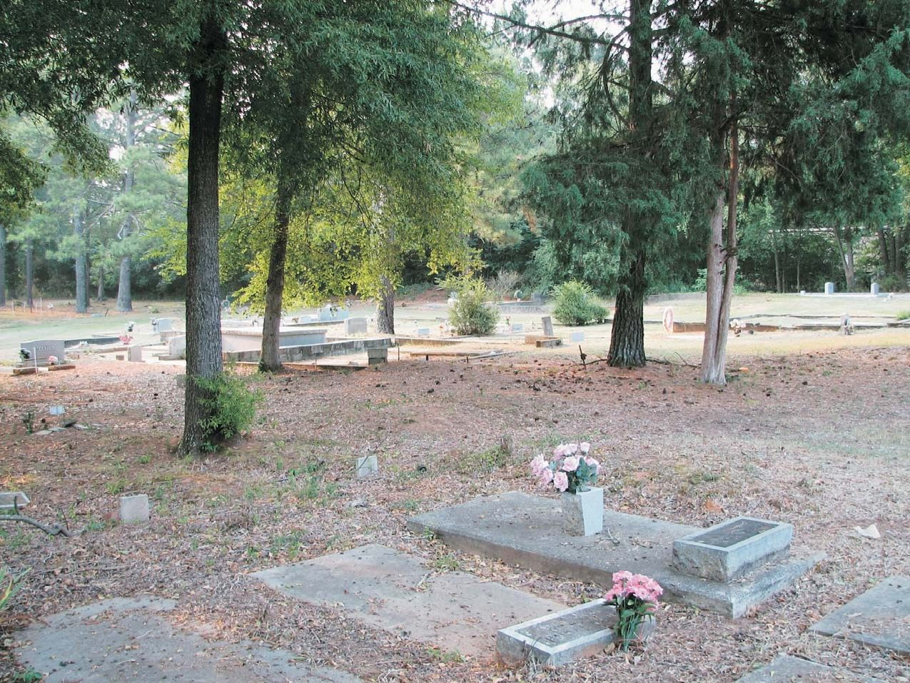 Old School Cemetery, Washington, Georgia